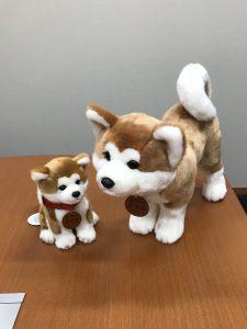 「秋田犬マサル」ぬいぐるみについて
