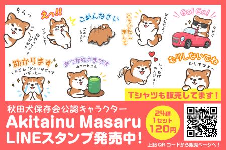 秋田犬マサルのLINEスタンプが発売されました!
